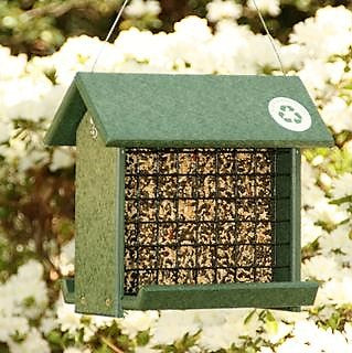 Songbird Essentials 11.5 IN x 5.5 IN x 10.5 IN Hunter Green Recycled Plastic Woodpecker Feeder