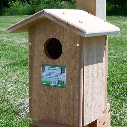 Songbird Essentials 9 IN x 7 IN x 14 IN Screech Owl House