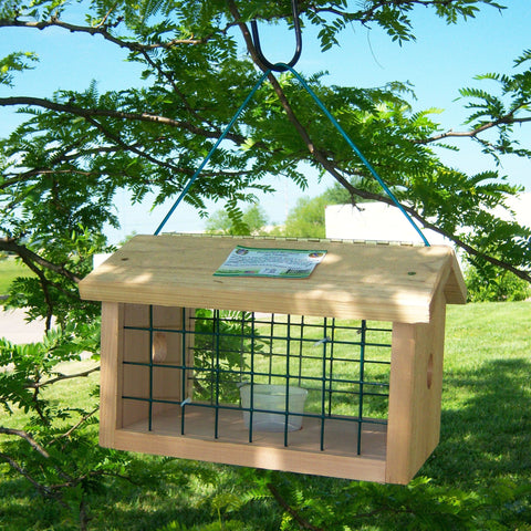 Protected Bluebird Jail Feeder