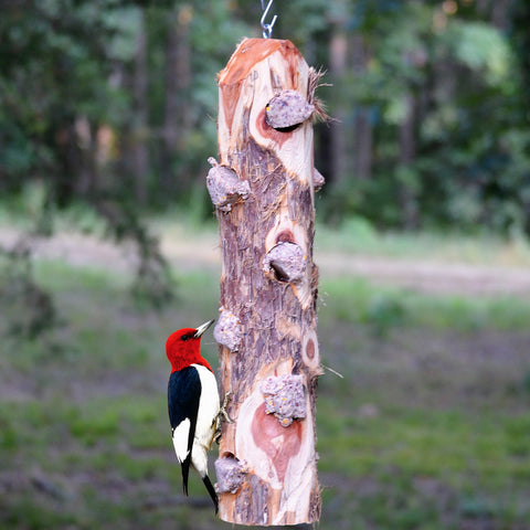 6 Plug Suet Log Without Perches