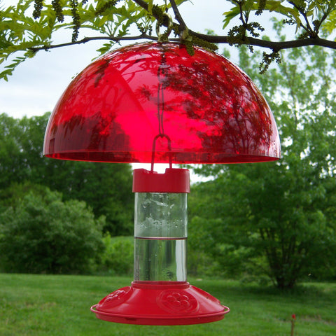 Hummer Helper Hummingbird Helmet