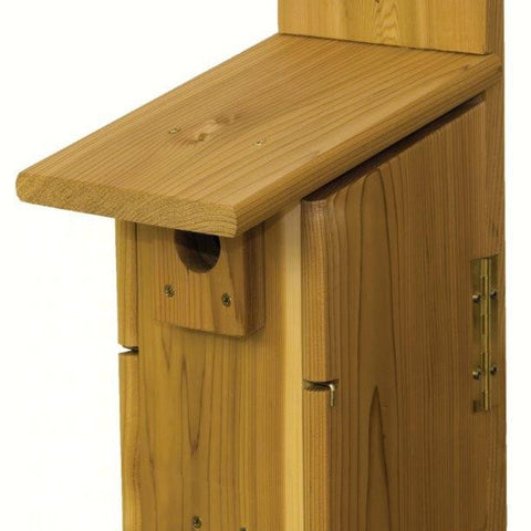 Western Ultimate Bluebird House