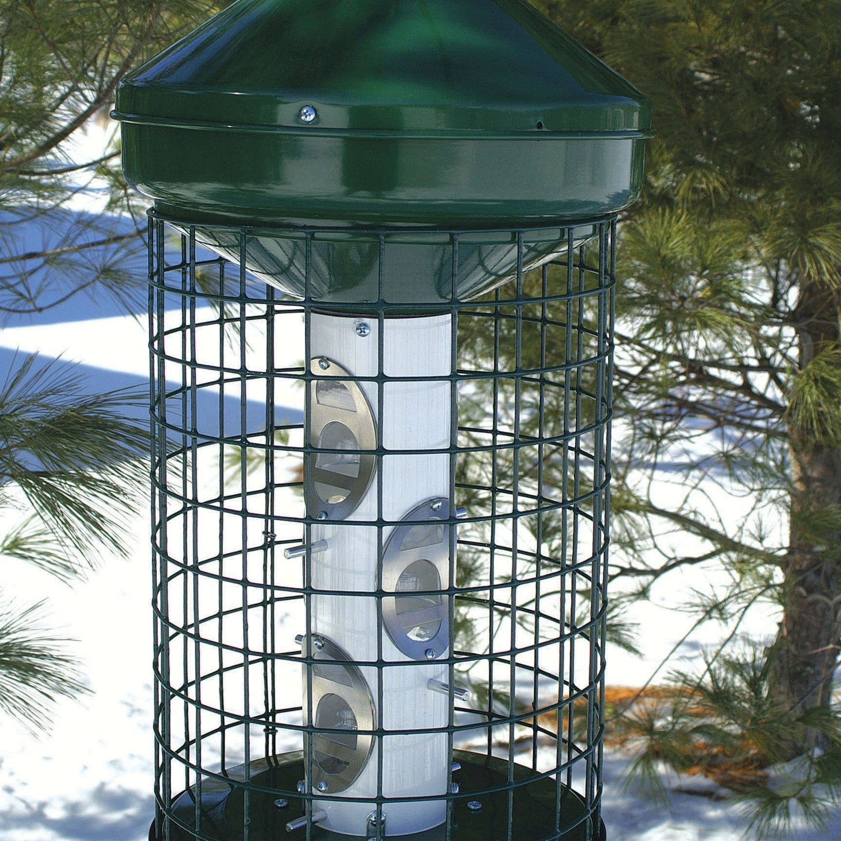 Avian Caged Sunflower And Mixed Seed Feeder
