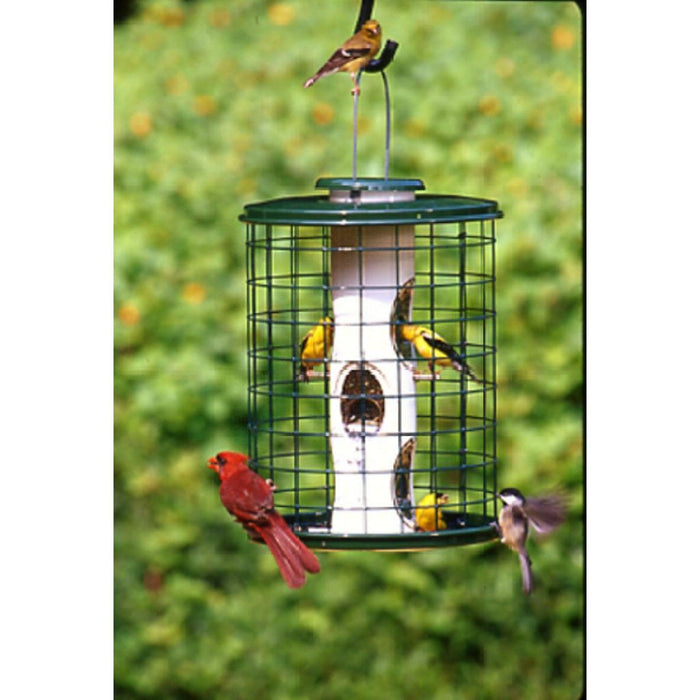 Vari Crafts 3 LB Capacity 11 IN Cage Mixed Seed Bird Feeder