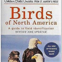 Birds of North America Guide