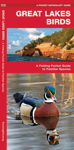 Great Lakes Birds Pocket Guide