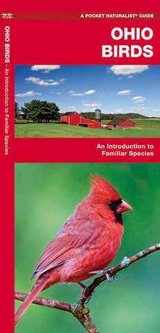 Ohio Birds Pocket Guide