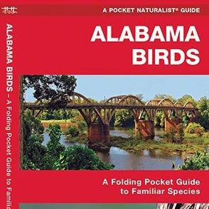 Alabama Birds Pocket Guide