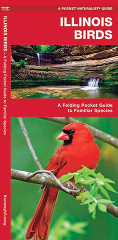 Illinois Birds Pocket Guide