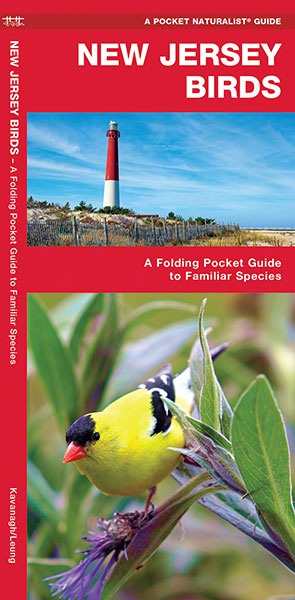 New Jersey Birds Pocket Guide