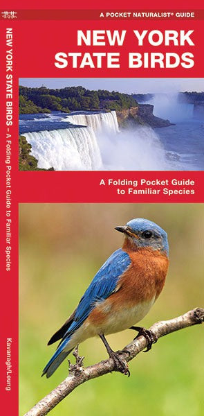 New York State Birds Pocket Guide