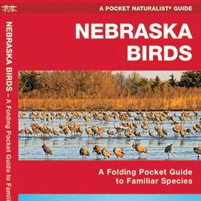 Nebraska Birds Pocket Guide