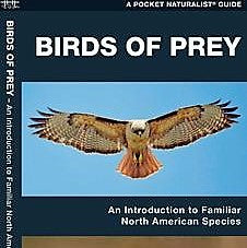 Birds of Prey Pocket Guide
