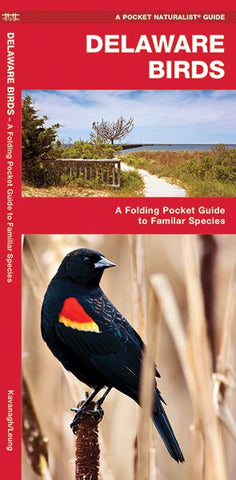 Delaware Birds Pocket Guide