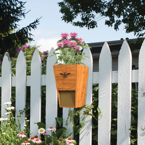 Heavy Duty Cedar Mason Bee House Planter