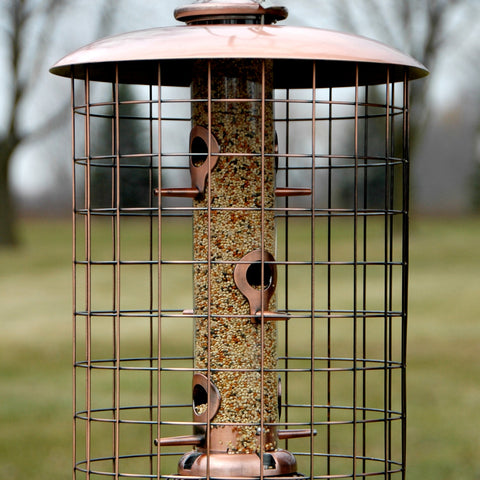 6 Port Coppertop Caged Bird Seed Feeder