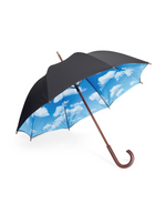 Load image into Gallery viewer, MOMA: Umbrella Large - Sky