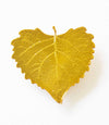 Cottonwood Leaf Magnet- Gold