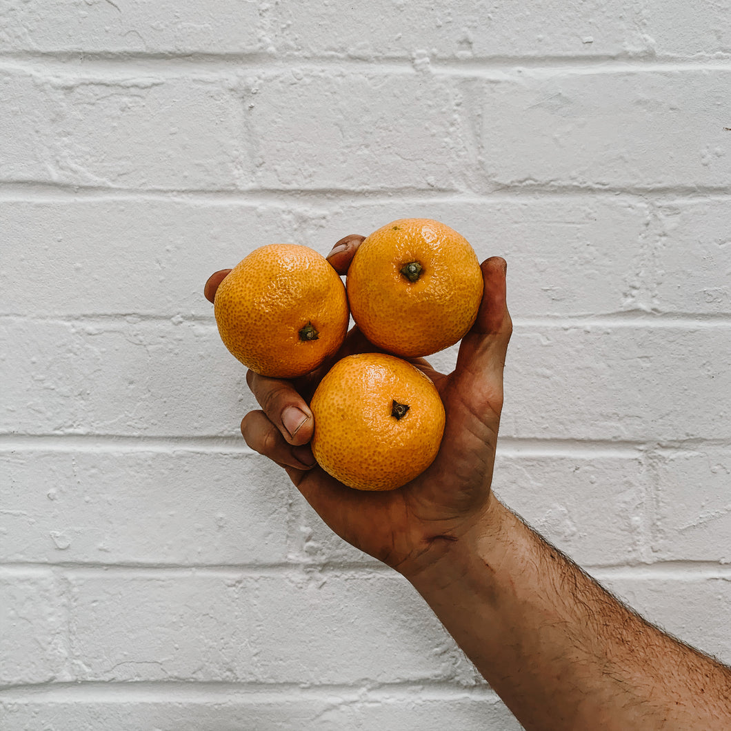 Clementines - Punnet