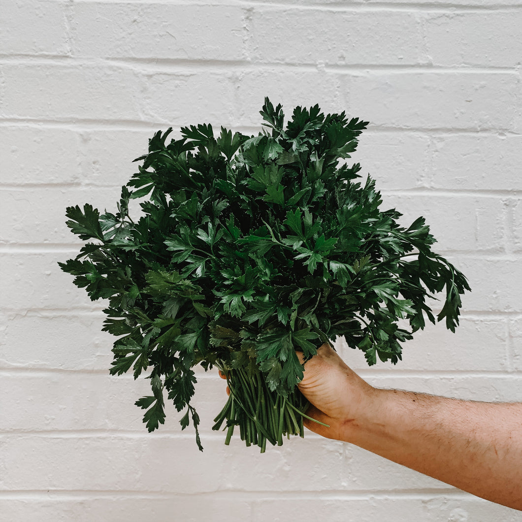 Parsley - Bunched