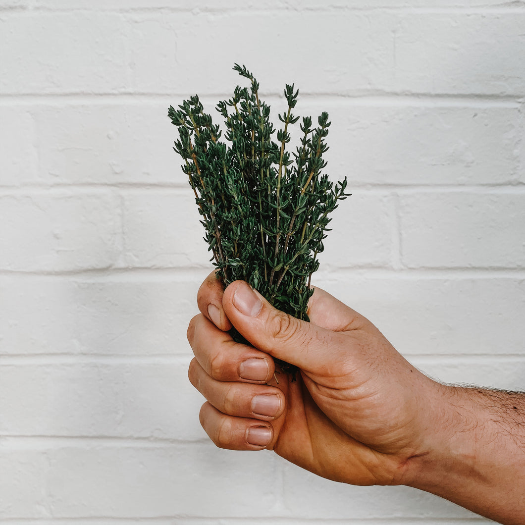 Thyme - Bunched