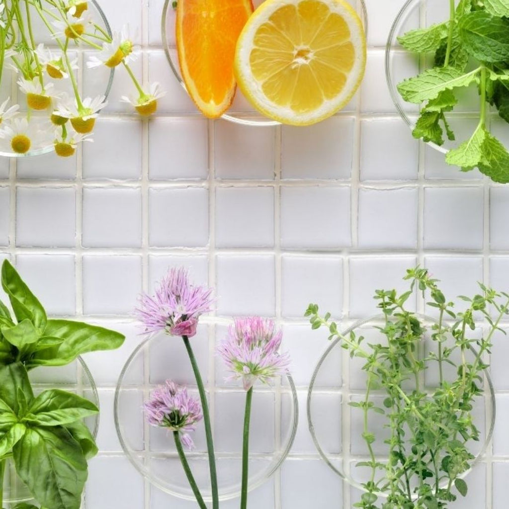 My Favourite Herbs For A Common Cold