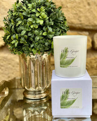White Ginger Candle Regular