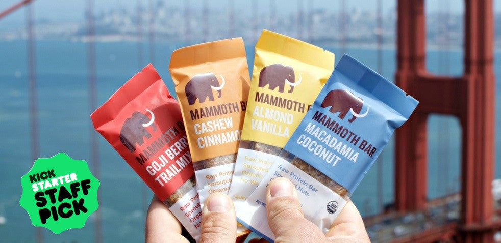 Mammoth Bar - Organic Sprouted Protein Bar made with raw ingredients.
