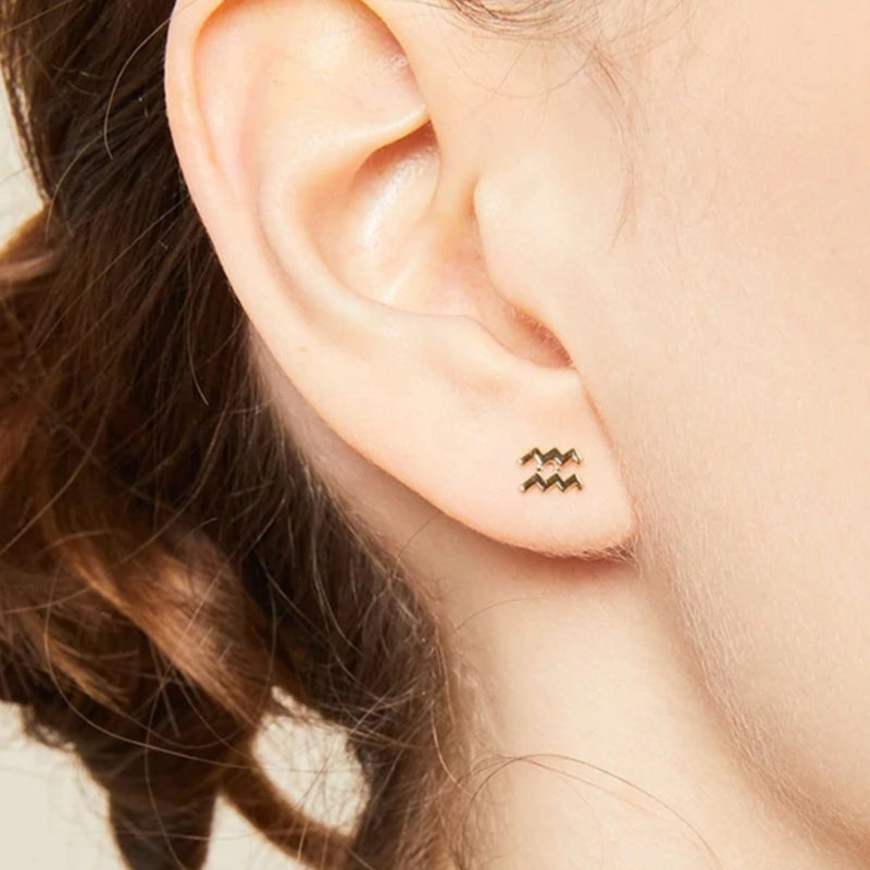 Zodiac Stud Earrings