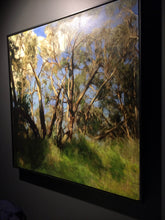Load image into Gallery viewer, Erica Tandori 'Summer Light in the Victorian Bush'