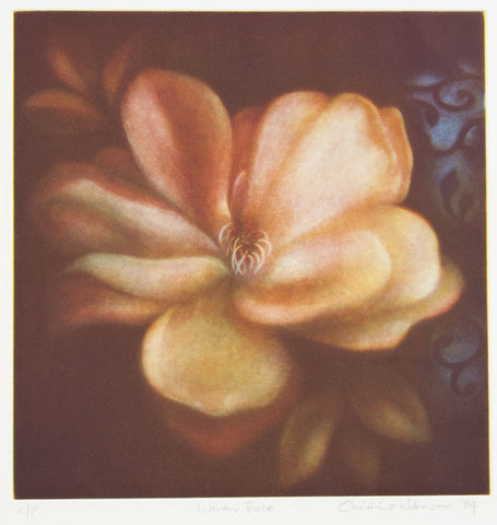 Christine Johnson 'Winter Rose' - etching on paper