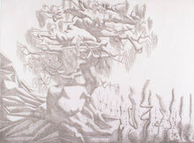 Load image into Gallery viewer, Keith Looby 'Growth' - etching on paper