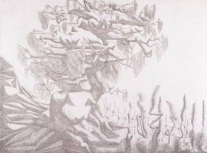 Keith Looby 'Growth' - etching on paper