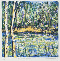 Greg Mallyon 'Daintree Creek' - screenprint on paper