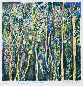 Greg Mallyon 'Rainforest Daintree'