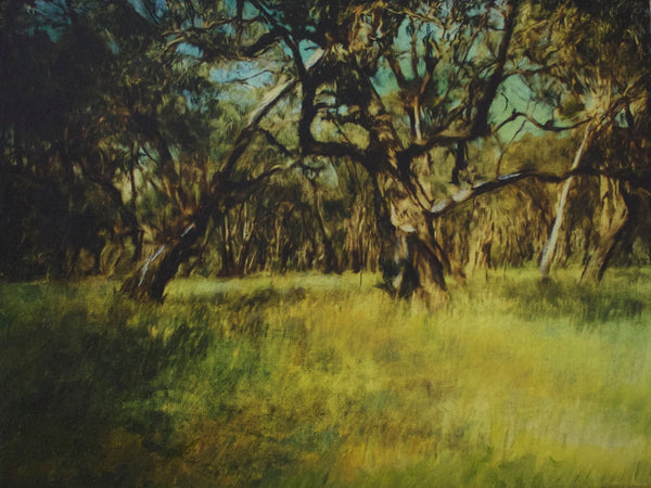 Erica Tandori 'Early Morning, Bush Landscape'