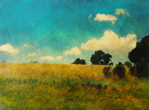 Erica Tandori 'Over the Golden Hill'