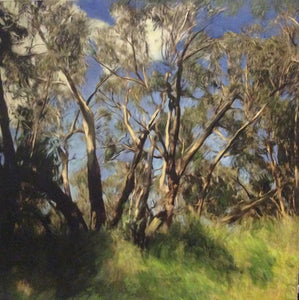 Erica Tandori 'Summer Light in the Victorian Bush'