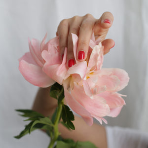 A caucasian female hand against a flower, wearing Paint Red nail polish, a classic bold red shade by Paint Nail Lacquer