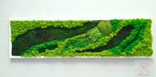 Load image into Gallery viewer, Moss frame, Moss Wall, 47x13, Moss Wall Art, Real Moss, Nature Room Decor, Art Modern wall