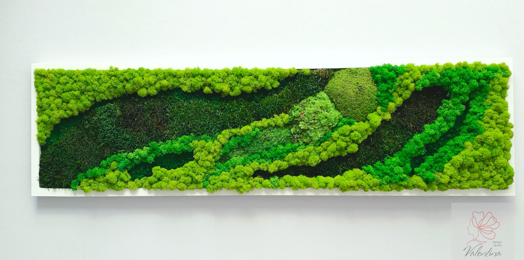 Moss frame, Moss Wall, 47x13, Moss Wall Art, Real Moss, Nature Room Decor, Art Modern wall