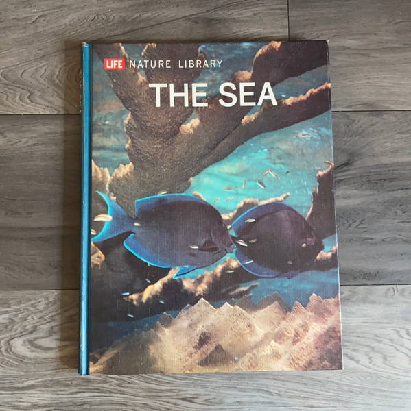 The Sea Book