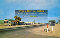 WEST ENTRANCE, Joshua Tree, California 1950s