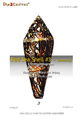 Red Sea Shell #3 - Sowerby