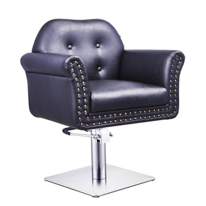 Salon Styling Chair Aro II