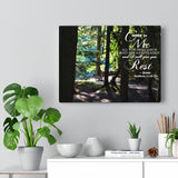Bench in the Woods Canvas Gallery Wrap