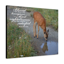 Baby Deer Canvas Gallery Wrap