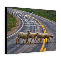 Sheep Crossing Canvas Gallery Wrap