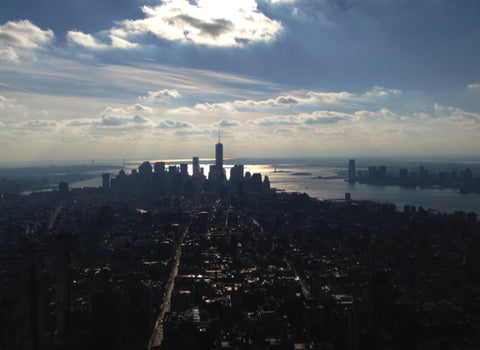 New York - Top Travel Tips - New York View