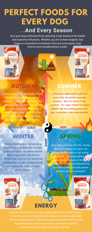 Achieve Optimum Health For Your Dog Through Food By Selecting Foods Appropriate For The Seasons Weather And Your Dogs Health